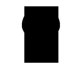 placeIcon